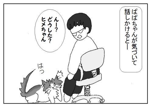 猫の肝試しのイラスト