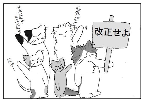 猫会議の様子