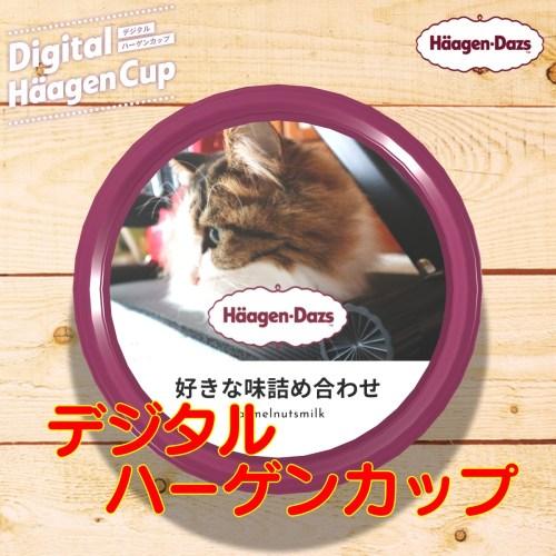 デジタルハーゲンカップ