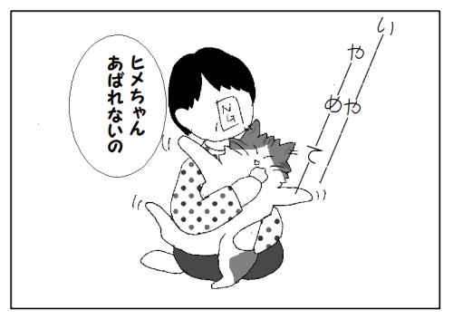 猫の鼻 汚れ 取り方
