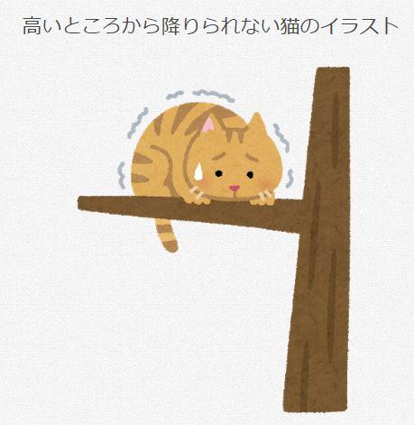 木から降りられない猫 イラスト