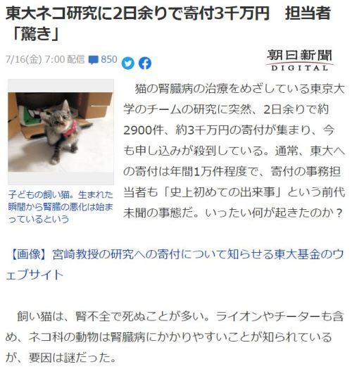 猫の腎臓病治療薬 東大 宮崎教授