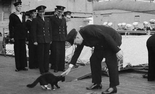 ウィンストン・チャーチル元首相のネルソン