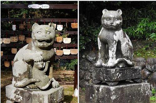 木島神社の狛猫(阿と吽)