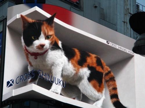 新宿 巨大3D猫 クロス新宿ビジョン