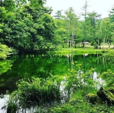 八千穂高原駒出池キャンプ場を本音レビュー!設備や施設をブログで紹介!周辺の温泉情報も!