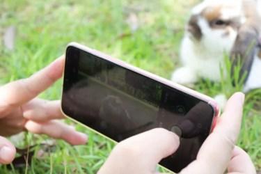 Androidにおすすめ!人気の無料カメラアプリ10選を紹介!