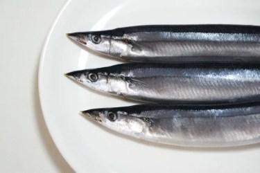 秋刀魚にアニサキスなどの寄生虫はいる?安全に食べる方法を紹介!