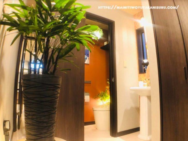 【入居後6ヵ月WEB内覧会】ローテーションで植物問題を解決した玄関