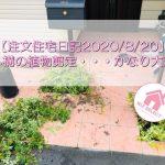 【注文住宅日記2020/8/20】外構の植物剪定・・・かなり大変です