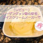 【レビュー】ハーゲンダッツ級の味を、アイスクリームメーカーで