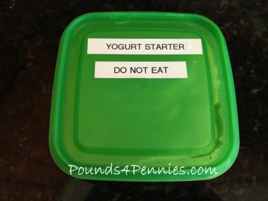 How to make yogurt Starter