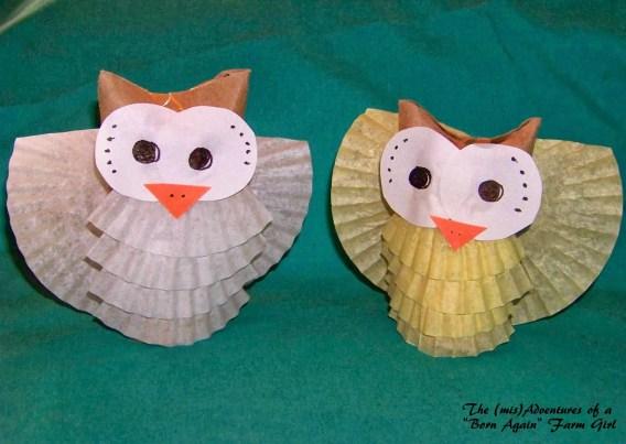 Thrifty Owl Craft