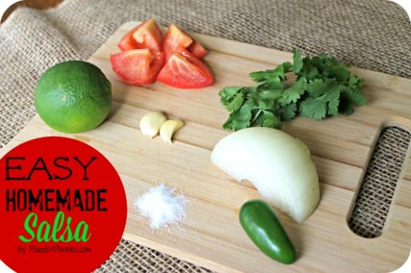 Easy homemade Salsa Ingredients 2