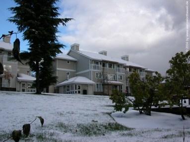 sfu-townhouses