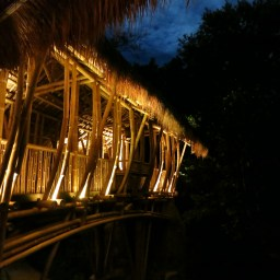 Stunning Bamboo Architecture