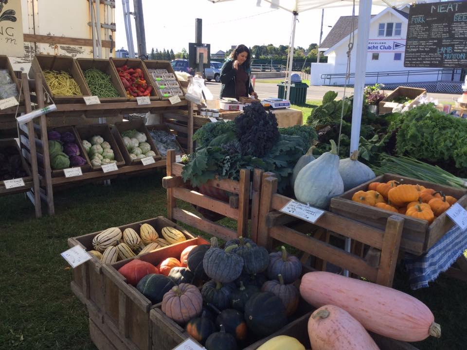 Rockland-Maine-Farmers-Market