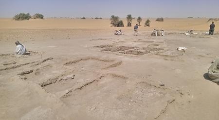 Opgravingsplaats H25