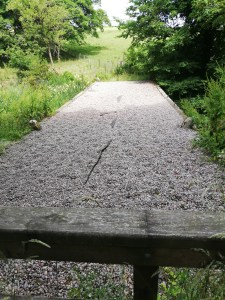 In the foreground is a solid wooden rail. After that is the flat surface of the top of one section which forms the cascades. It's about four metres across and 2 metres wide and covered in small stones. On the other side is a green field with a few trees. On either side is heavy undergrowth higher than the height of the stone feature. This is choking up the stream which should be flowing over or through this stone feature.
