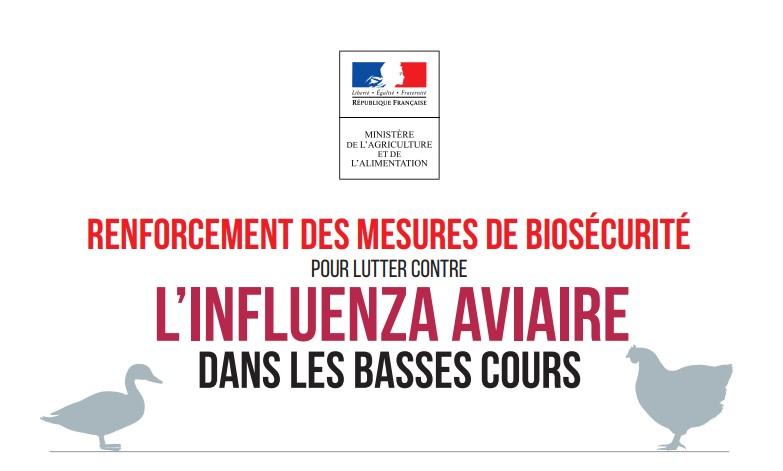 Grippe Aviaire Infos Officiels