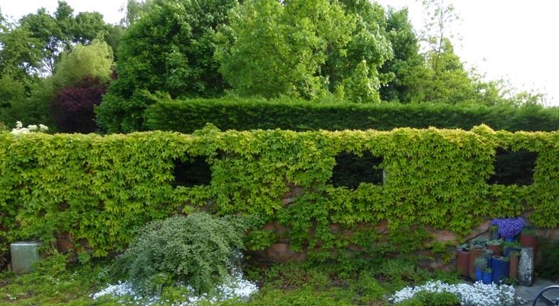 Rendez vous au jardin le 6 et 7 juin mairie de ligron for Rendez vous au jardin 2015 yonne