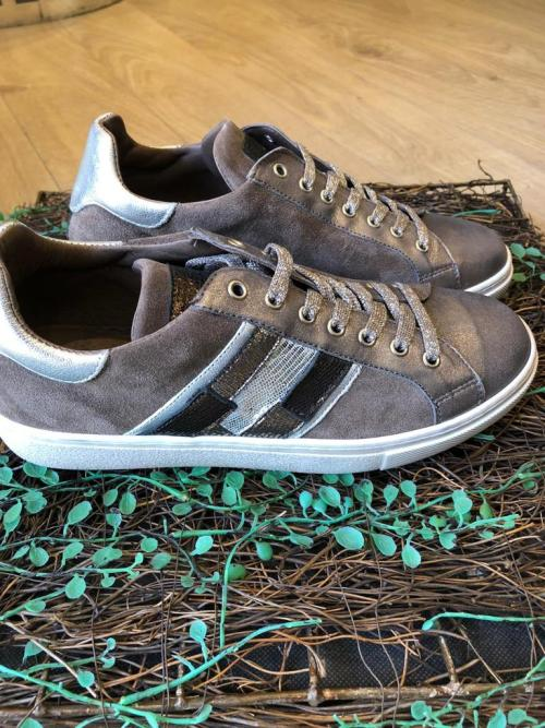 Requins Susanne Mix Taupe Skin Trainers