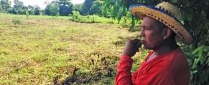 Colômbia: o pão de cada dia não há de faltar