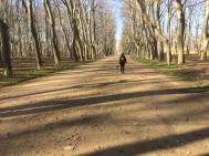50km Girona3