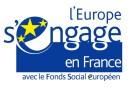FSE-Europe