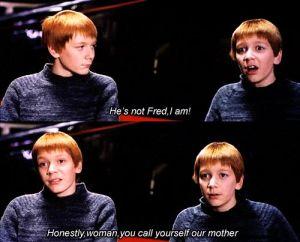 """""""Il n'est pas Fred, je le suis ! Sérieusement femme, tu oses te dire notre mère""""... pour découvrir après coup que leur mère avait vu juste !"""