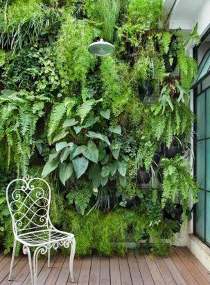 Faire Un Mur Végétal Extérieur : faire, végétal, extérieur, Conseils, Créer, Végétal, D'intérieur