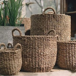 As seen today available from Petersham Nurseries, our beautiful hogla basket range