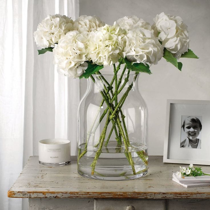 Decorating With White Hydrangeas My Favorite Flower