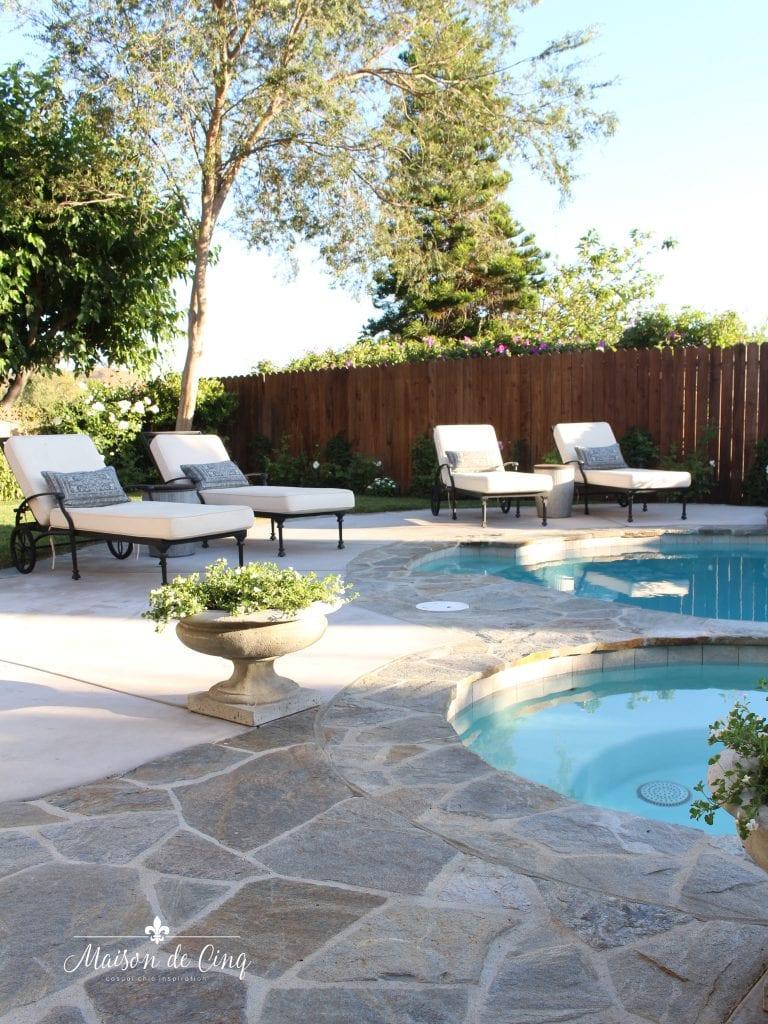 backyard pool design and renovation