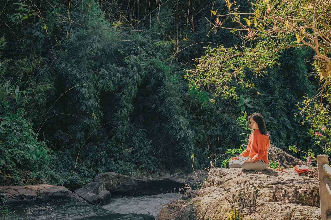 woman sitting on brown stone near green leaf trees at daytime