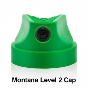 Montana Level 2 Cap