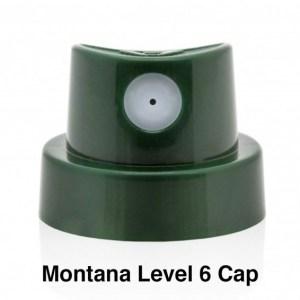 Montana Level 6 Cap