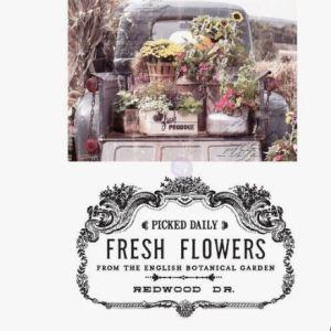 Transfer Fresh Flowers MaisonMansion