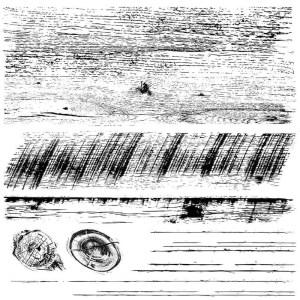 Barnwood Planks Stamp 2 delen