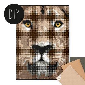 Leeuw DIY poster 50 x 70 cm