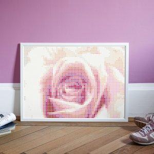 Roos Dot art 50 x 70 cm