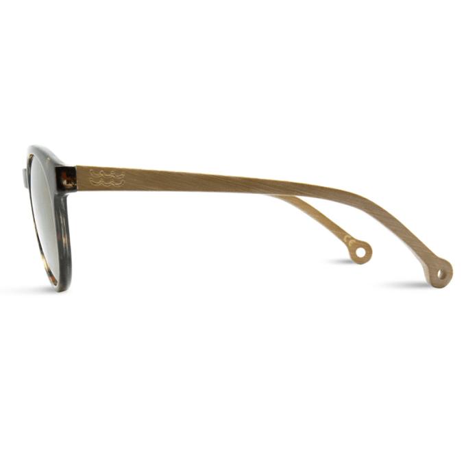lunette de soleil costa tortoise parafina