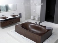 Unique and Unusual bathtubs for Bathroom Design