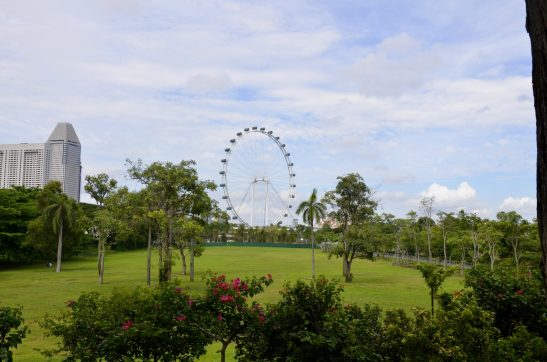 Gardens by the bay, Singapore Flyer