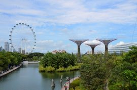 Gardens by the Bay, Singapore Flyer, Supertree Grove