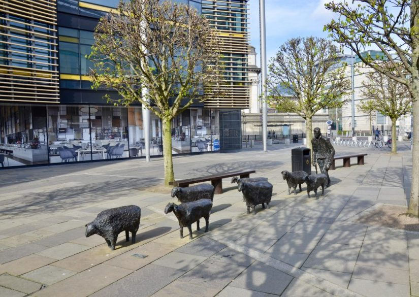 Sheep on the Road Sculpture Belfast, Northern Ireland