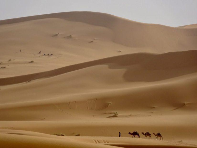 Deserto do Saara, Marrocos, deserto, dunas, passeio de camelo, Merzouga