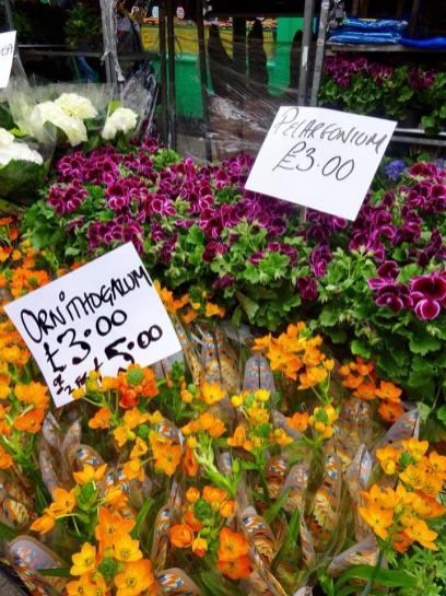 Columbia Road, feira de flores Londres