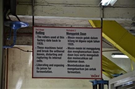 BOH tea - factory