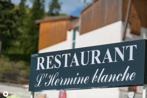 lhermine blanche